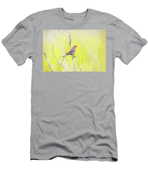 Male Finch On Bare Branch Men's T-Shirt (Athletic Fit)