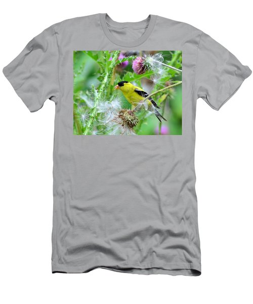 Male Goldfinch Men's T-Shirt (Slim Fit) by Kathy Eickenberg