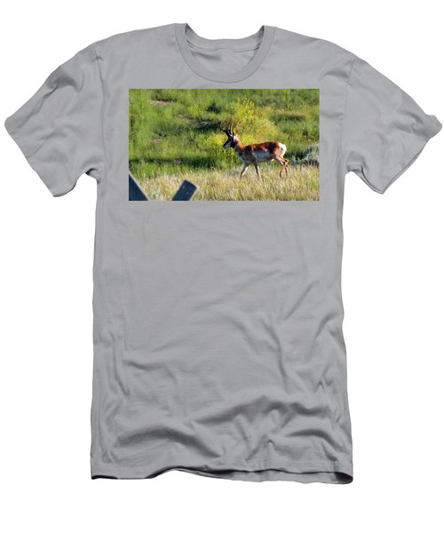 Male Pronghorn Men's T-Shirt (Slim Fit) by C Sitton