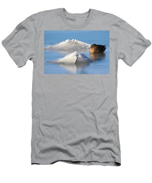 Mallard Duck Mount Sinai New York Men's T-Shirt (Slim Fit) by Bob Savage