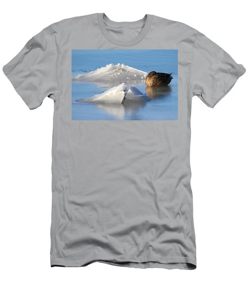 Mallard Duck Mount Sinai New York Men's T-Shirt (Athletic Fit)