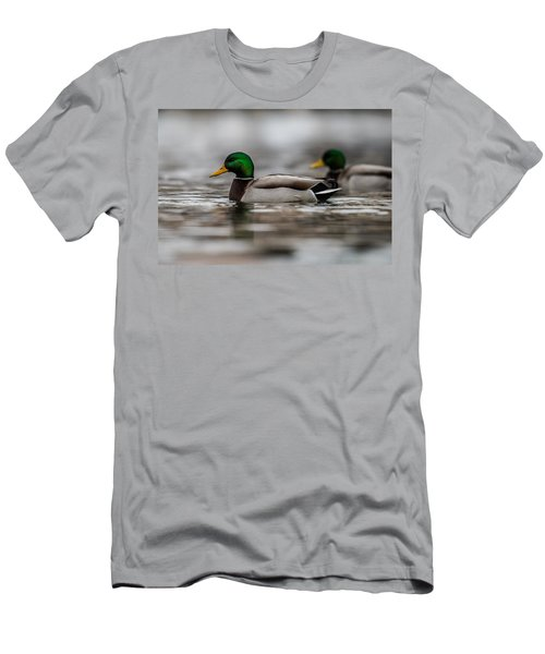 Mallard Men's T-Shirt (Athletic Fit)