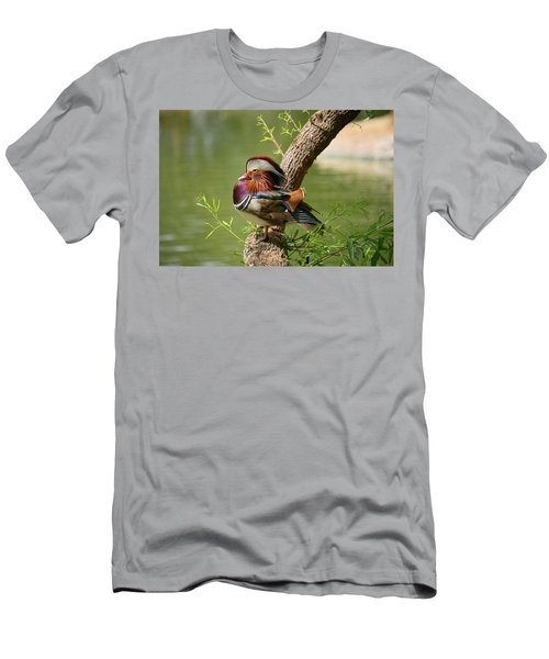 Mandarin Duck On Tree Men's T-Shirt (Athletic Fit)