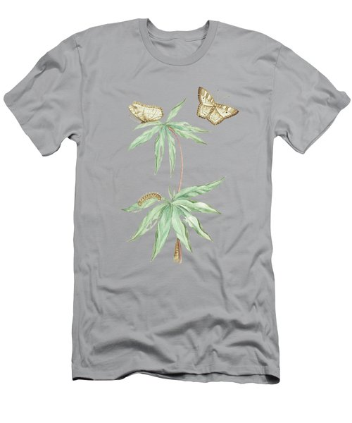 Manihot Plant For Cassava Bread With Caterpillar And Butterfly By Cornelis Markee 1763 Men's T-Shirt (Athletic Fit)