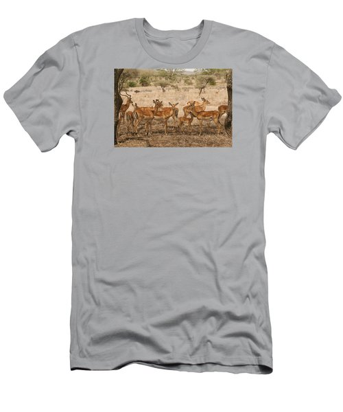Master Of His Domain Men's T-Shirt (Slim Fit) by Gary Hall