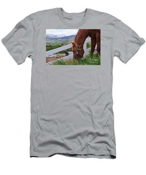 Mccool Grazing Men's T-Shirt (Athletic Fit)