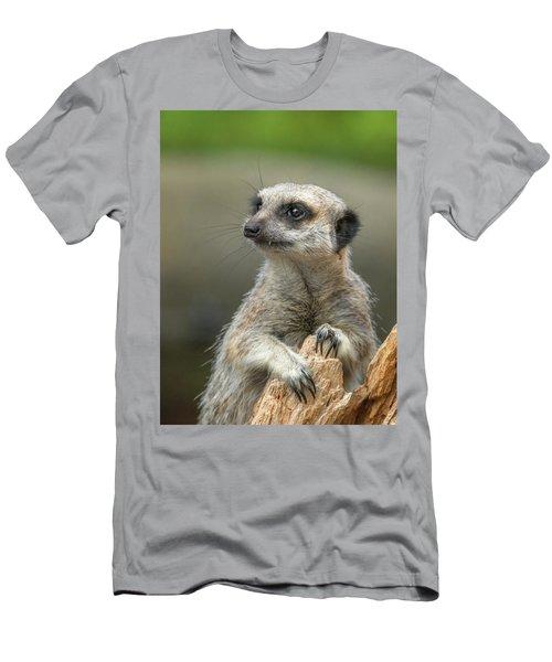 Meerkat Model Men's T-Shirt (Slim Fit) by Racheal  Christian