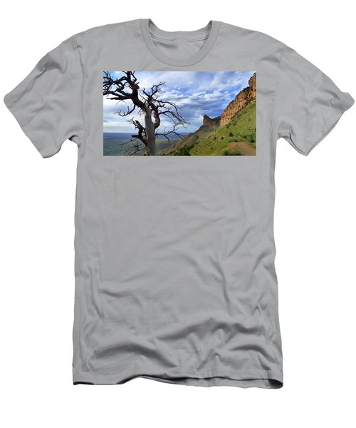 Mesa Verde Mood Men's T-Shirt (Athletic Fit)