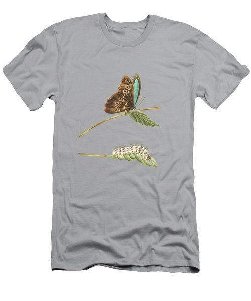 Metamorphosis Of Caterpillar And Butterfly Seen From Above And Below By Cornelis Markee 1763 Men's T-Shirt (Athletic Fit)