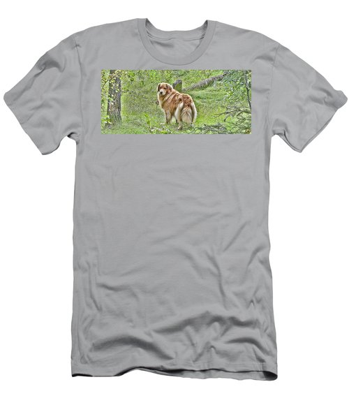 Miss B Men's T-Shirt (Slim Fit) by Rhonda McDougall