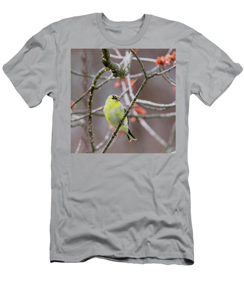 Men's T-Shirt (Slim Fit) featuring the photograph Molting Gold Finch Square by Bill Wakeley