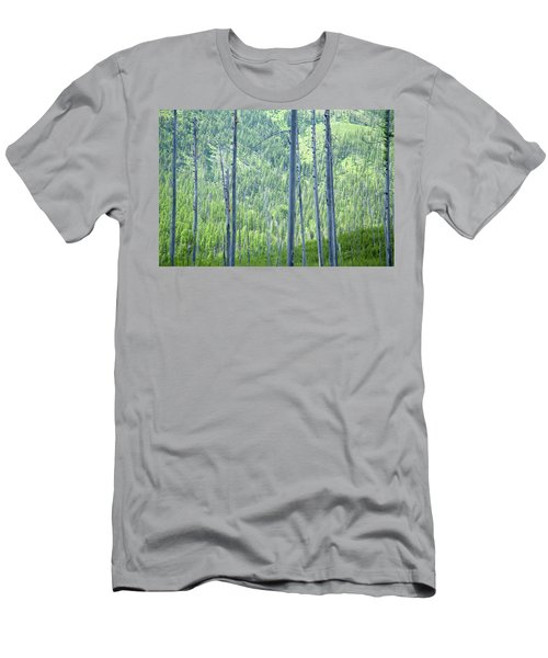 Montana Trees Men's T-Shirt (Athletic Fit)