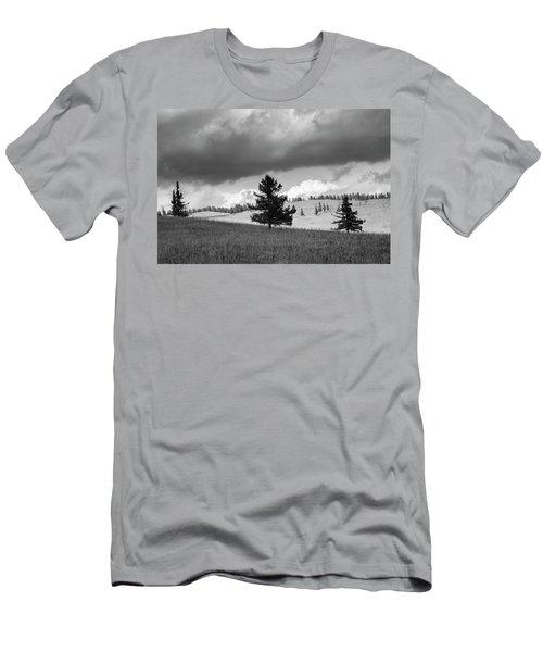 Moody Meadow, Tsenkher, 2016 Men's T-Shirt (Athletic Fit)