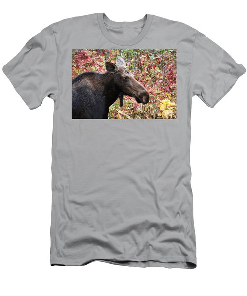 Men's T-Shirt (Slim Fit) featuring the photograph Moose And Fall Leaves by Peggy Collins