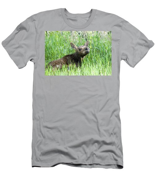 Moose Baby Men's T-Shirt (Athletic Fit)