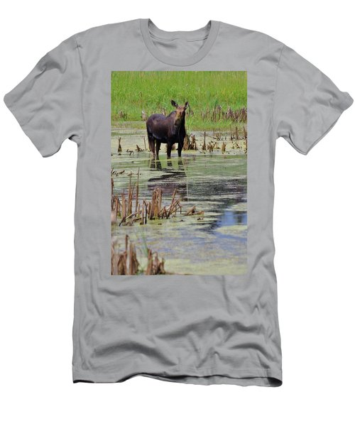 Moose Enjoying Dinner Men's T-Shirt (Slim Fit) by Matt Helm