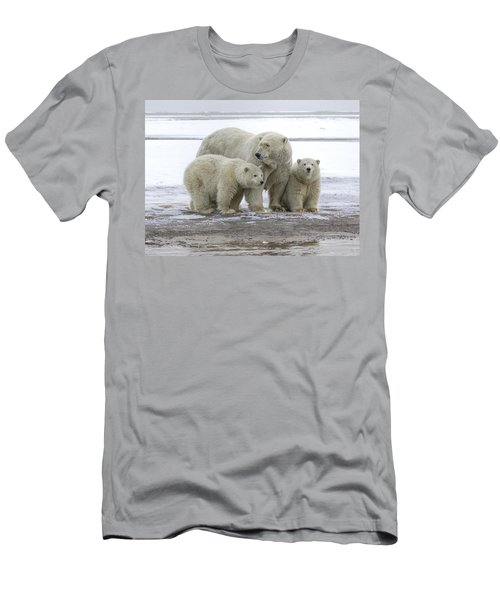 Mother And Cubs In The Arctic Men's T-Shirt (Athletic Fit)