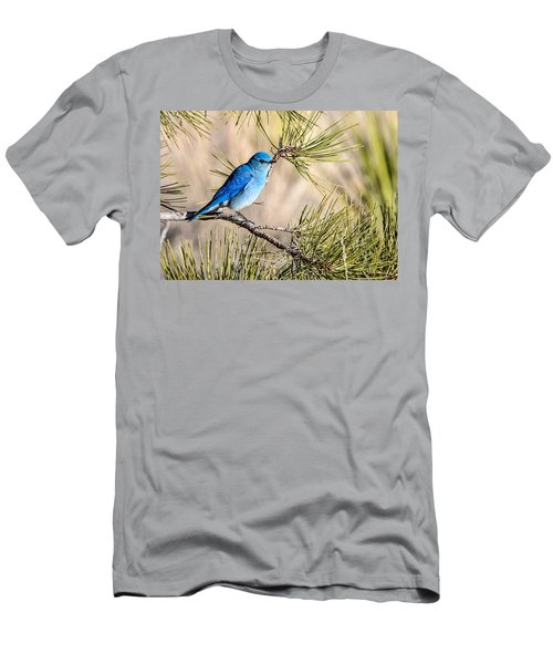 Mountain Bluebird In A Pine Men's T-Shirt (Athletic Fit)