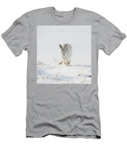 Mountain Hare Approaching Men's T-Shirt (Athletic Fit)