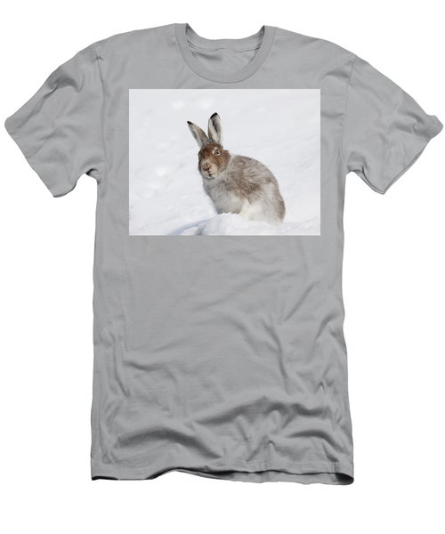 Mountain Hare In Winter Men's T-Shirt (Athletic Fit)