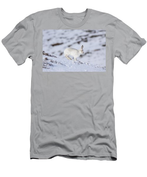 Mountain Hare - Scottish Highlands  #12 Men's T-Shirt (Athletic Fit)