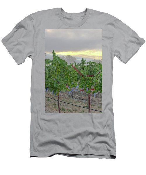 Napa Valley At Dawn Men's T-Shirt (Athletic Fit)