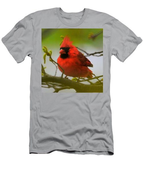 North Carolina Cardinal Men's T-Shirt (Athletic Fit)