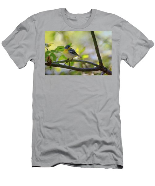 Northern Parula Men's T-Shirt (Slim Fit) by Gary Hall