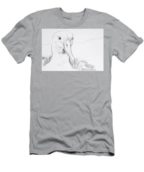 Northern Royal Albatross Men's T-Shirt (Athletic Fit)