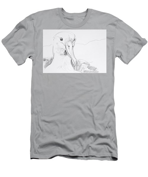 Northern Royal Albatross Men's T-Shirt (Athletic Fit)