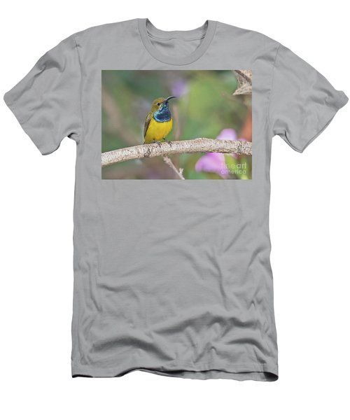 Olive-backed Sunbird Men's T-Shirt (Athletic Fit)