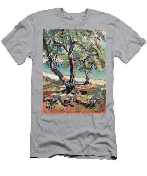 Olive Trees Along Marmari Beach Paxos Men's T-Shirt (Athletic Fit)