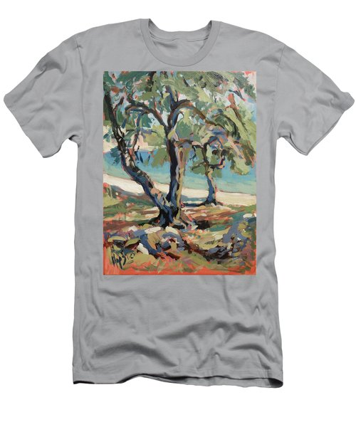 Olive Trees Along Marmari Beach Paxos Men's T-Shirt (Athletic Fit)