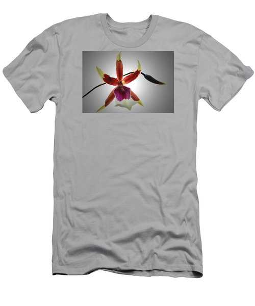Orchid Cambria. Men's T-Shirt (Athletic Fit)