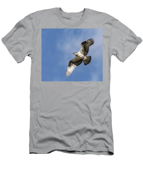 Men's T-Shirt (Slim Fit) featuring the photograph Osprey 2017-3 by Thomas Young