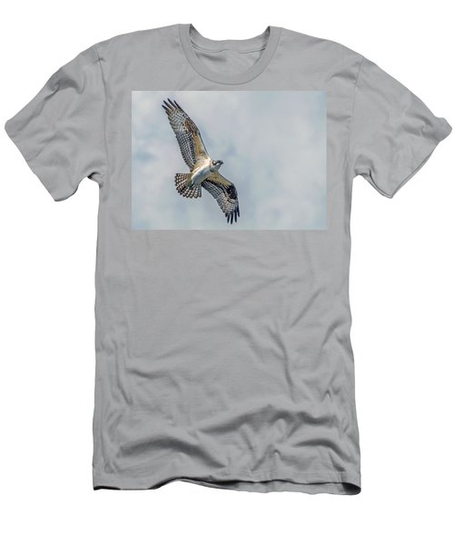 Osprey In Flight Men's T-Shirt (Athletic Fit)