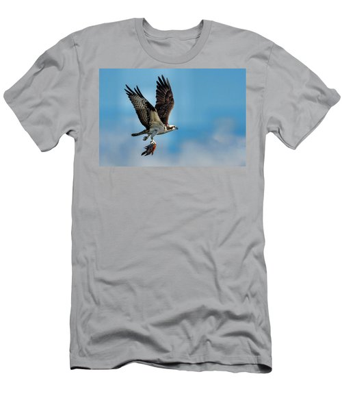 Osprey With Rainbow Bass 2 Men's T-Shirt (Athletic Fit)
