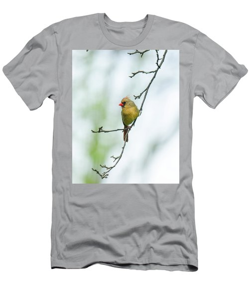 Out On A Limb 2 Men's T-Shirt (Athletic Fit)