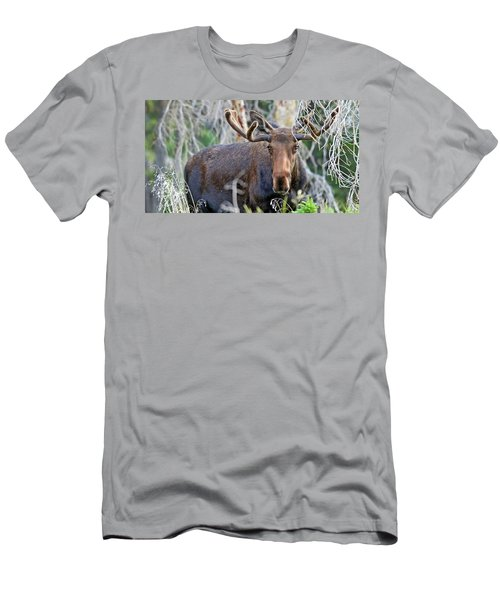 Men's T-Shirt (Slim Fit) featuring the photograph Overlooking Moose by Scott Mahon