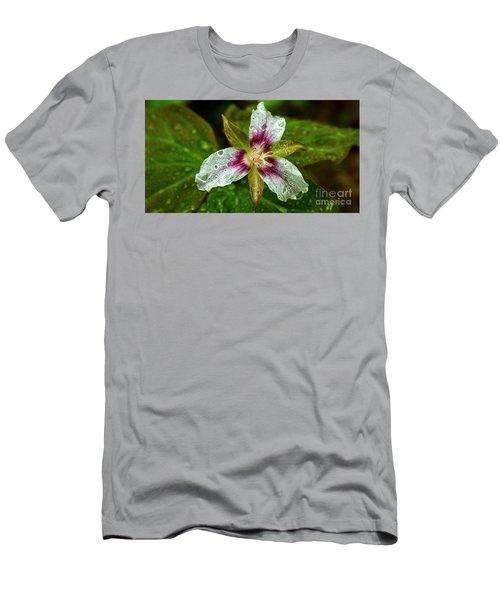 Painted Trillium With Raindrops Men's T-Shirt (Athletic Fit)