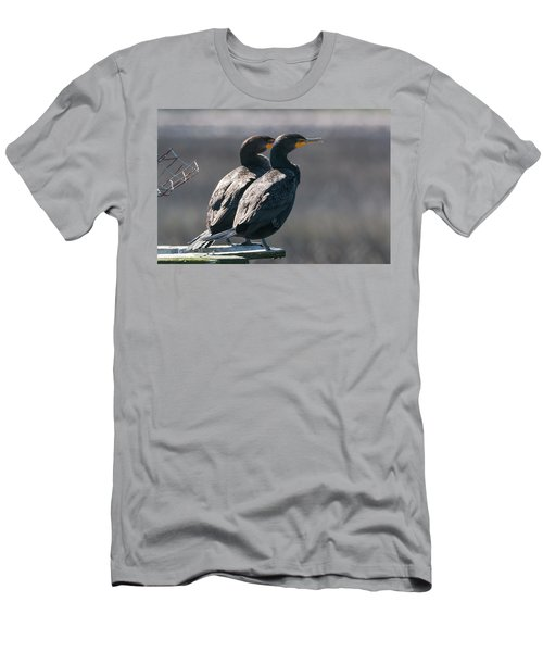 Pair Double-crested Cormorant 3 March 2018 Men's T-Shirt (Athletic Fit)