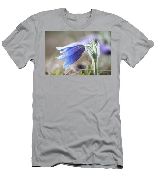 Pasque Flower's Silver Grey Hair Men's T-Shirt (Athletic Fit)