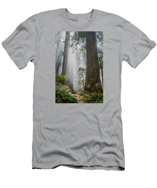 Path Through The Light Men's T-Shirt (Slim Fit) by Greg Nyquist