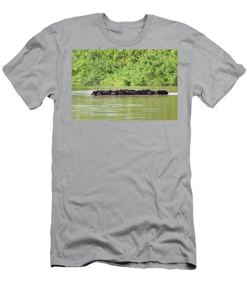 Peccaries Herd Crossing River Men's T-Shirt (Athletic Fit)