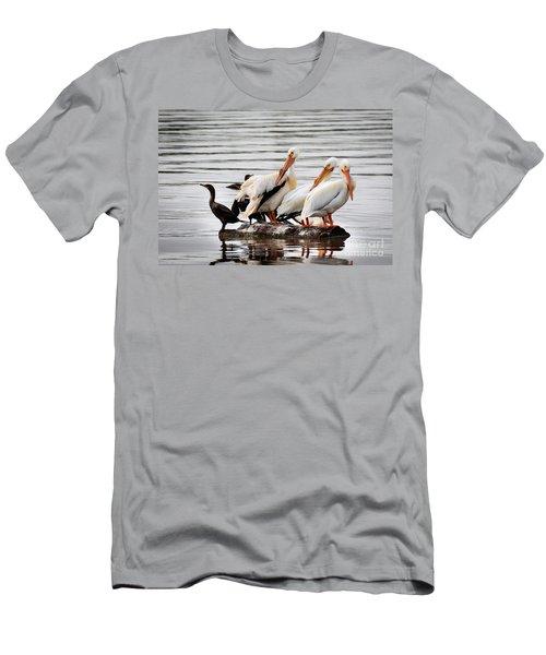 Pelicans And Cormorants Men's T-Shirt (Athletic Fit)