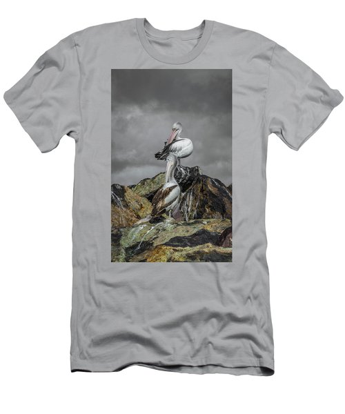 Pelicans On Rocks Men's T-Shirt (Athletic Fit)