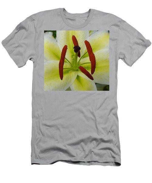 Perfect Beauty Men's T-Shirt (Athletic Fit)