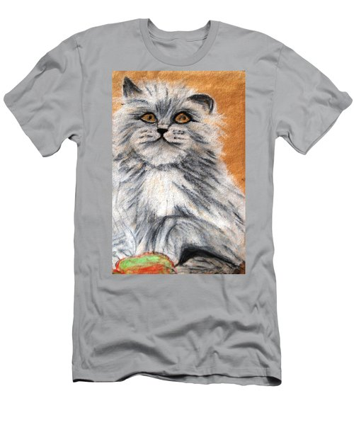 Persian Cat Men's T-Shirt (Slim Fit) by Angela Murray