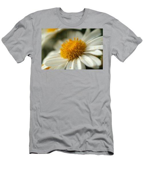 Petals And Pollen Men's T-Shirt (Athletic Fit)