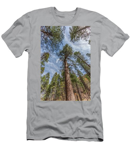 Pine Cathedral On The West Fork Men's T-Shirt (Athletic Fit)